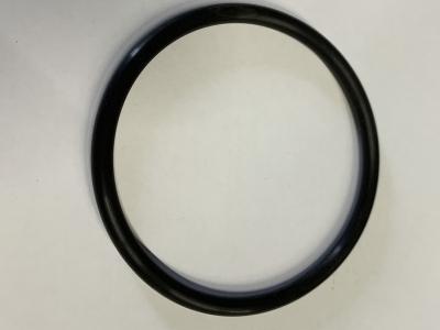 Berthoud Pressure Filter Housing O Ring